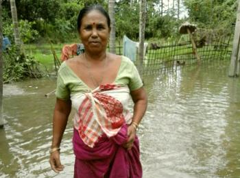 Makita in the flood affected Jorhat district