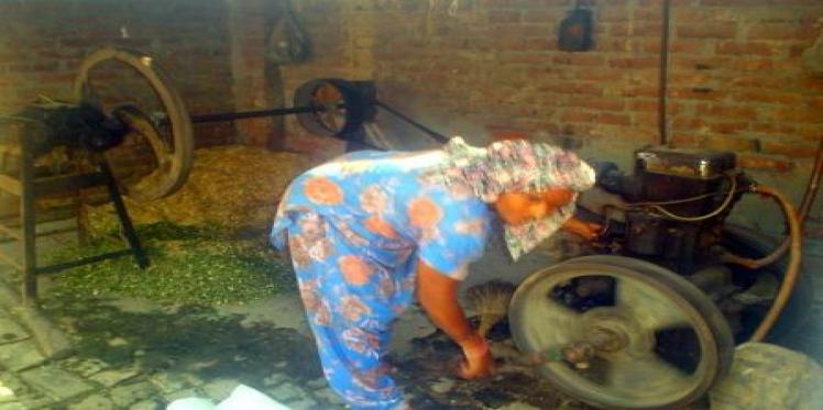 Woman farmer braves odds in male dominated agriculture sector