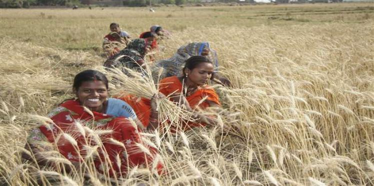 budget 2019, farmers