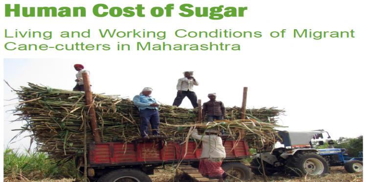 human cost of sugar