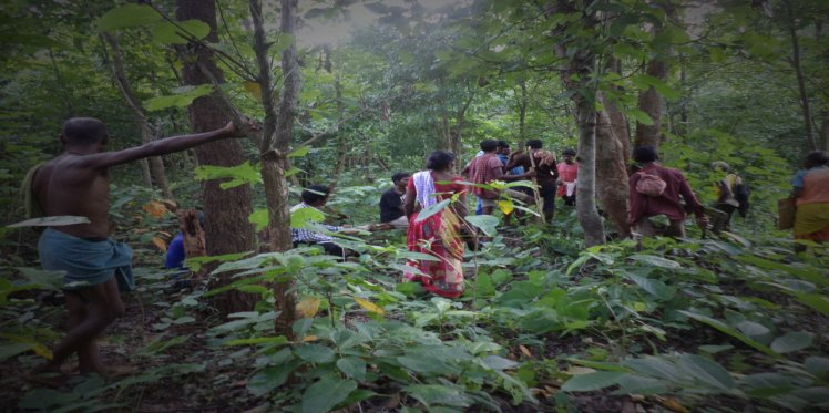 CFR Rights gives management, conservation, protection rights to its people