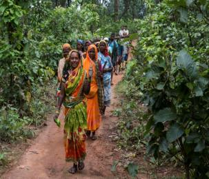 Promise and Performance : 10 years of Forests Rights Act in India