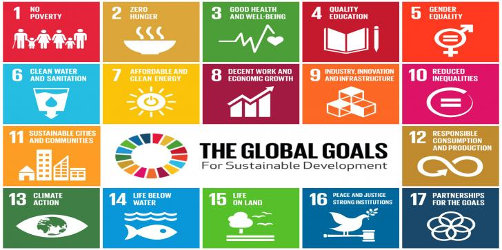 The Future We Want – Implementing the SDGs